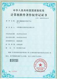 盛东健康服务管理平台V1.0证书