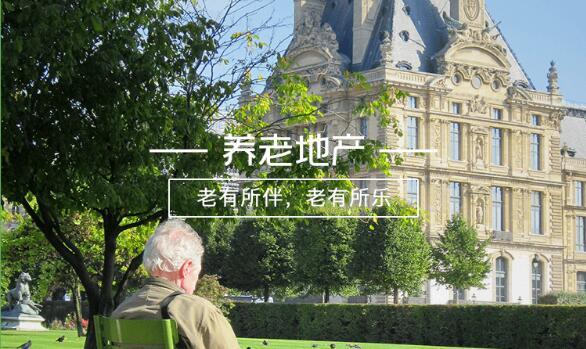 夕阳红下的朝阳产业——中国万博manbetx下载水晶宫地产行业分析